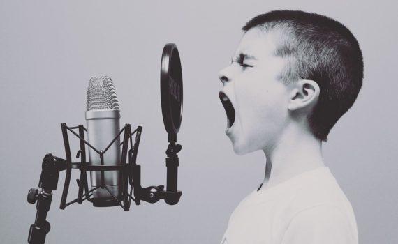 Sänger, Musiker
