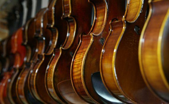 Geigen im Musikhaus