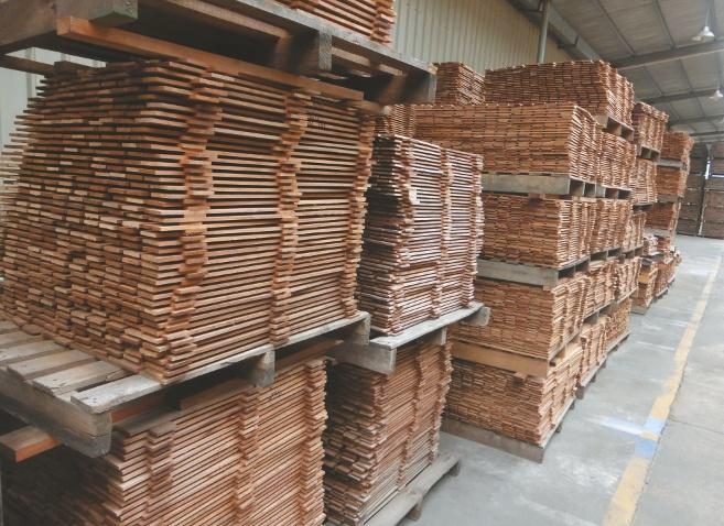 Ein kleiner Teil des Holzlagers. Die Fabrik hat Vorräte für mindestens 2 Jahre.